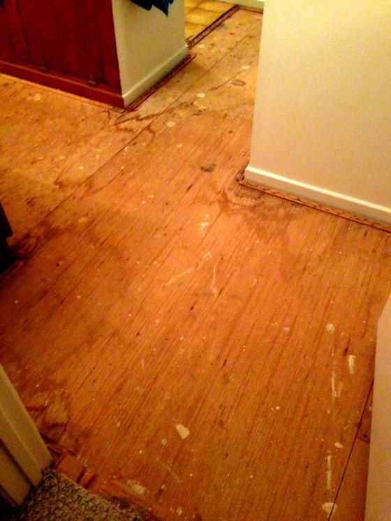 Carpet Removed